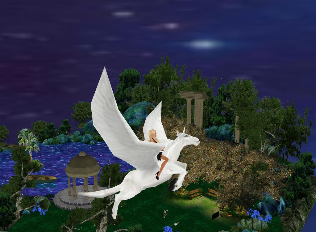 Night Pegasus